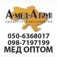 АМЕДА ГРУП купаємо мед оптом Кіровоградська, Полтавська обл