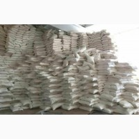 Сахар урожай 2018 года шамраевский завод