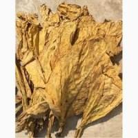 Продаю качественный табак на развес разной крепости-Берли Вирджиния Махорка