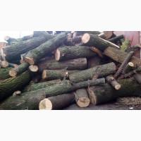 Продам дрова колоті метровий кругляк Рожище