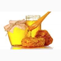 Куплю мед в Полтавской обл / сами выезжаем
