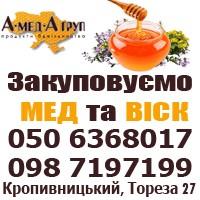 Закупка меда оптом. Постянно. Центральная Украина