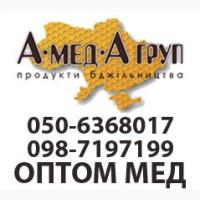 Закупаем мед у населения от 300 кг. Кировоградская область