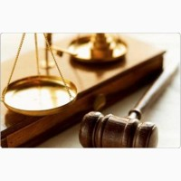 Помощь квалифицированного адвоката в административных спорах