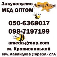 Закупка меда в Кировоградской и соседних областях