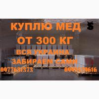 Закупка меда от 300 кг. с подсолнуха и рапса. Днепропетровская и соседние обл
