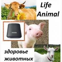 Помощь ветеринару прибор Life Animal4 уровня мощности