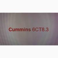 Запчастини двигуна Cummins 6CT8.3