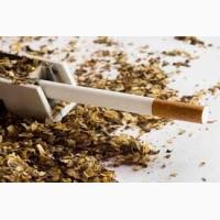 Берли Вірджинія Махорка тютюн вищого сорту