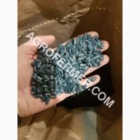 Семена масличного подсолнечника NELSON F - 699 Канадский трансгенный гибрид
