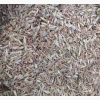 Зерноотходы бобовые, масличные, зерновые куплю