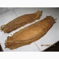 Табак Дюбек, Вирджиния Голд, Милениум, Гавана махорка електромашинки