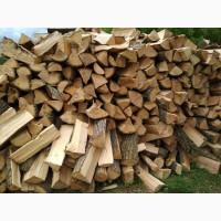 Реалізуємо дрова паливні - дрова Горохів купити з доставкою